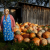 The Babushkas of Chernobyl: recensione del documentario di Holly Morris