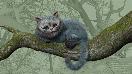 gatto progr 3