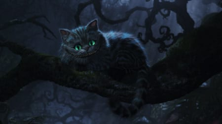 gatto progr 4