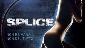 Poster Splice