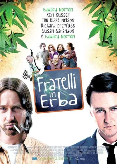 locandina del film Fratelli in erba 01