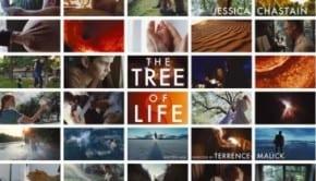 thetreeoflife1