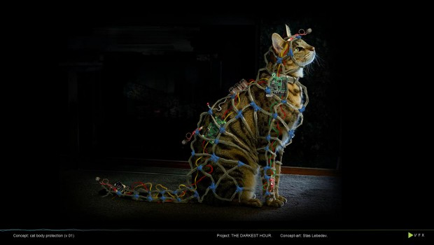 Faraday Cat