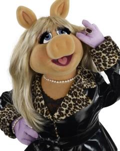 3 11 2010 Piggy 43136 v2 C