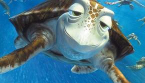 Nemo3D WEB Cartolina 7 Scorza
