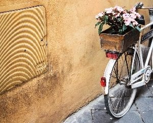 bicicletta 6