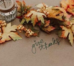 Delle foglie