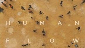 Human FlowCov